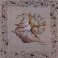 Pastel Shell II Fine Art Print