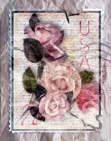 Love Letter Roses Fine Art Print