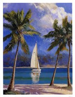 "13"" x 17"" Tropical Pictures"