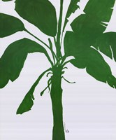 Silhouette Of Palm 2 Fine Art Print