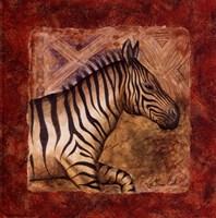 Zebra Safari Framed Print