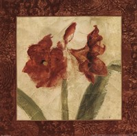 Sienna Quartet I Fine Art Print