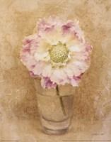 """Scabiosa Blossom In Glass by Danhui Nai - 8"""" x 10"""" - $9.99"""