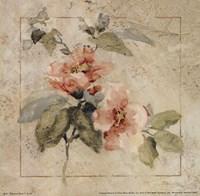 Provence Rose I Fine Art Print