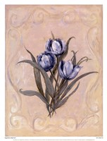 """Tulips Azure by Peggy Abrams - 13"""" x 17"""""""