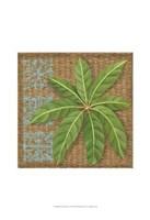 """Block Print Palm VI by Chariklia Zarris - 13"""" x 19"""", FulcrumGallery.com brand"""