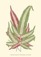 "Tropical Leaf Collection IX by Jillian Jeffrey - 10"" x 13"", FulcrumGallery.com brand"