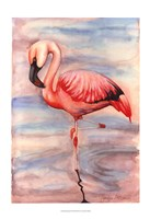 Pink Flamingo II Framed Print
