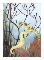 Seahorse Serenade II Fine Art Print