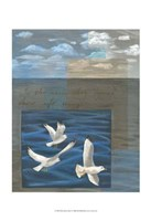 Three White Gulls I Fine Art Print