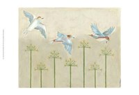 Harmony Flight II Framed Print
