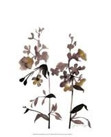 "Watermark Wildflowers III by Jennifer Goldberger - 13"" x 16"""