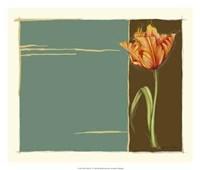 "Parrot Tulip No 2 by Jennifer Goldberger - 26"" x 22"""