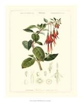 """Lush Tropical IV by Jillian Jeffrey - 16"""" x 20"""""""