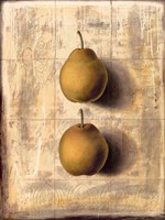 """12"""" x 16"""" Pear Pictures"""