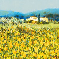 Lemon Grove, Tuscany Fine Art Print