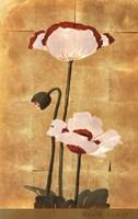 Golden Poppy I Fine Art Print