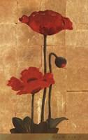 Golden Poppy II Fine Art Print