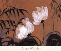 White Blossom II Fine Art Print