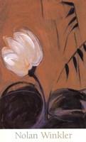 White Blossom III Framed Print