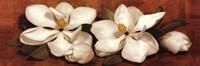 """Spring Blossoms II by Jillian Jeffrey - 36"""" x 12"""""""