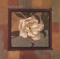 Spring Magnolia II Fine Art Print