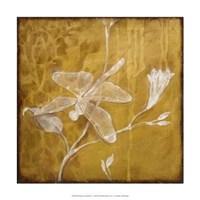 """Wings Damask IV by Jillian Jeffrey - 15"""" x 15"""""""