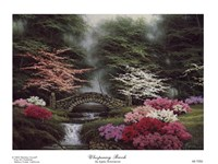 Whispering Brook Fine Art Print