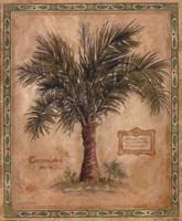 "Palm Carpoxylon by Betty Whiteaker - 9"" x 11"""