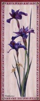 "Iris Panel II by Ruth Baderian - 8"" x 20"""
