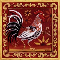 Il Gallo I Fine Art Print