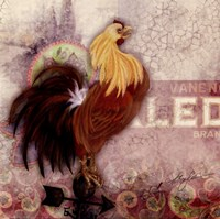 Morning Rooster Fine Art Print