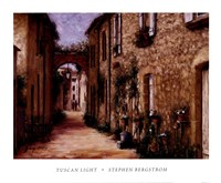 "Tuscan Light by Stephen Bergstrom - 18"" x 15"""