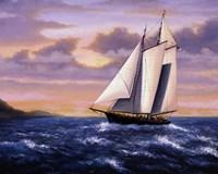 West Wind Sails Fine Art Print