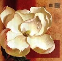 Magnolia Square II Fine Art Print