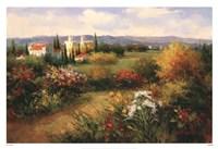 Traccia Bella Fine Art Print