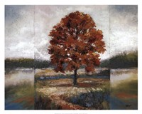 Evening Oak Fine Art Print
