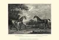 """King Herod Flying Childers by John Scott - 19"""" x 13"""""""