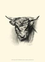 """Antique Cattle III by F Lehnert - 10"""" x 13"""""""