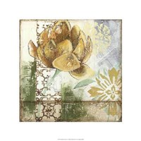 Globeflower Fresco I Framed Print