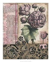 "Cottage Rose II by Megan Meagher - 18"" x 22"""