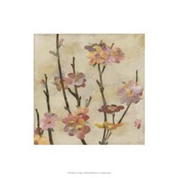 Blossom Collage II Framed Print
