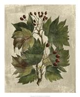 "Tree I by Desahyes - 18"" x 22"""