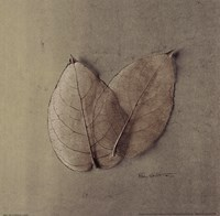 Pair Of Skelton Leaves Fine Art Print