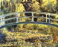 Waterlily Pond Fine Art Print