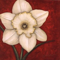 """Stand Firm In Red by Annie Lapoint - 12"""" x 12"""""""