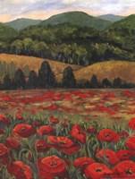 Blue Ridge Poppies Fine Art Print
