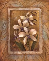 "Illuminated Orchid I by Elaine Vollherbst-Lane - 16"" x 20"""