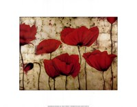 Poppies II Fine Art Print