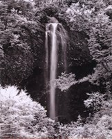 """8"""" x 10"""" Waterfall Pictures"""